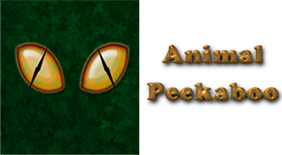 Animal Peekaboo App Icon